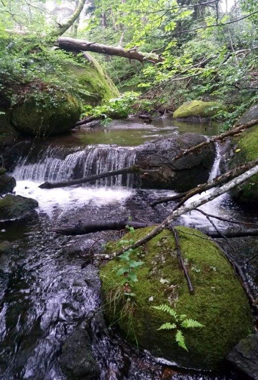Riviére du Lac du Merle