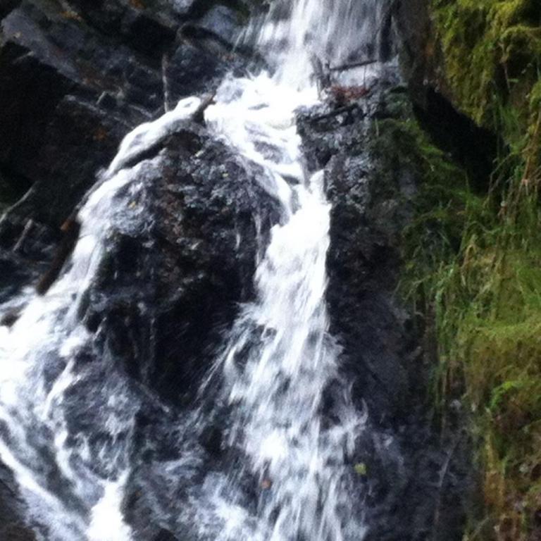 Brocéliande Cascade Val Sans Retour