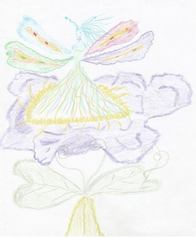 La fee papillon