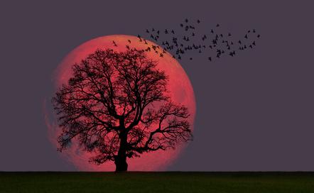 La pleine lune exceptionnelle du 31 janvier 2018