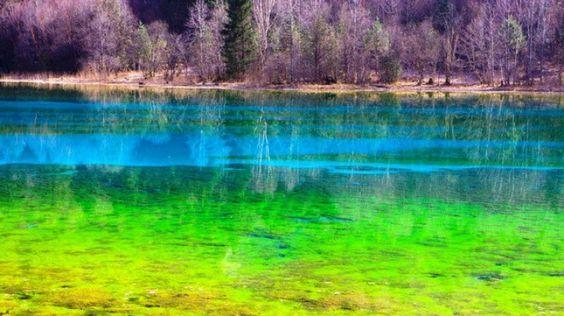 Lac cinq fleurs chine