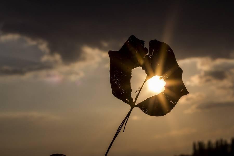 Lumiere soleil