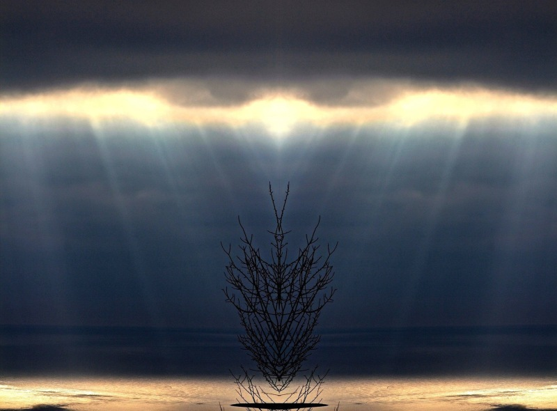 Ombre lumiere