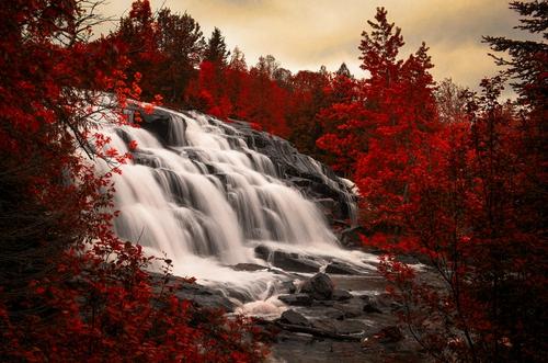 Riviere automne
