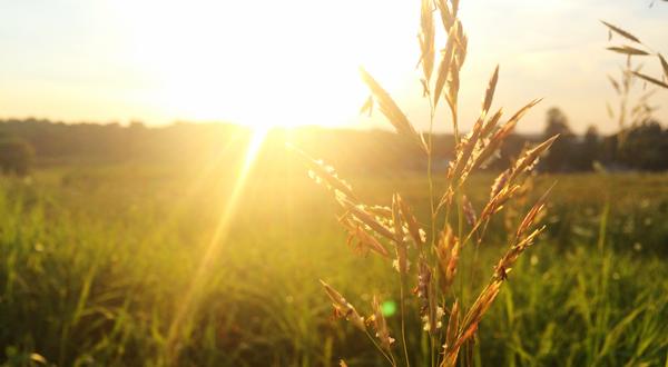 Soleil matin aube lumiere solatube banniere